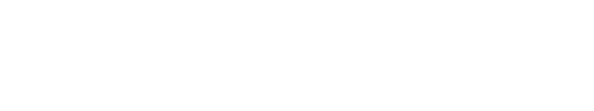 Blind + Low Vision NZ